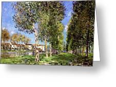 Lane Of Poplars At Moret Greeting Card