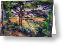 Large Pine And Red Earth Greeting Card