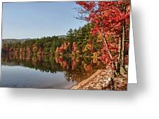 Late Afternoon On Lake Chocorua Greeting Card