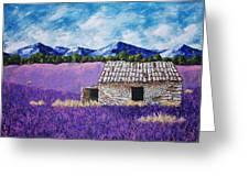Lavender Farm Greeting Card