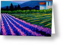 Lavender Field France Greeting Card