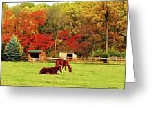 Lazy Autumn Day Greeting Card