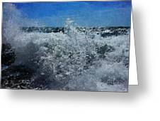 Levant Spray Greeting Card by Julian Perry