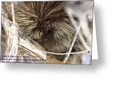 Life Is Like A Porcupine... Greeting Card
