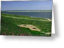 Sea Roses Greeting Card