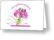 Lightness Of Being Greeting Card