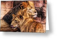 Lion Mates Greeting Card