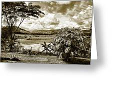 Llanos Venezolanos Greeting Card