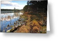 Loch Garten Greeting Card