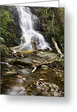 Log Hollow Falls North Carolina Greeting Card