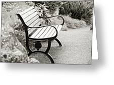Lone Bench In The Park. Greeting Card