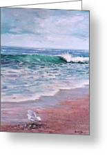 Lonely Gull Greeting Card