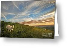 Long Mynd Hill Greeting Card