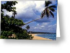 Los Tubos Beach Greeting Card