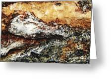 Macro Rock Greeting Card