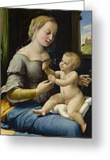 Madonna Of The Pinks Greeting Card