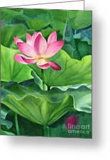 Magenta Lotus Blossom Greeting Card