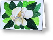 Magnolia IIi Greeting Card