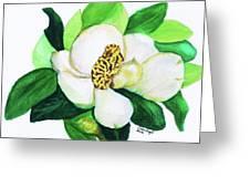Magnolia Iv Greeting Card