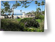 Main Beach Laguna Greeting Card