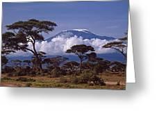 Majestic Mount Kilimanjaro Greeting Card