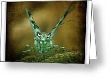 Mantis 5 Greeting Card