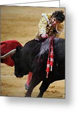 Matador Jose Tomas II Greeting Card