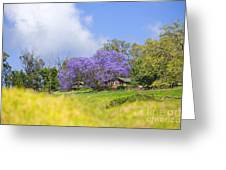 Maui Upcountry Greeting Card