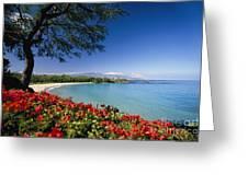 Mauna Kea Beach Greeting Card