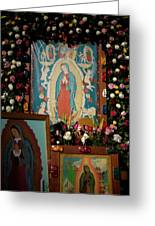 Mexico Our Lady Of Guadalupe Pilgrimage Greeting Card