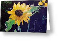 Midday Sunflower Greeting Card