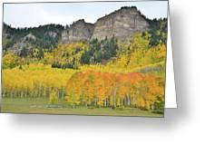 Million Dollar Highway Aspens Greeting Card