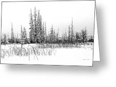 Misty Reeds Greeting Card