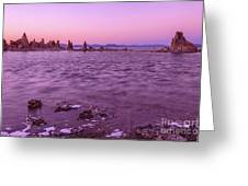 Mono Lake California Greeting Card