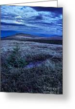 Moonlight On Stone Mountain Slope With Forest Greeting Card