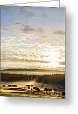 Morning At Golf Course Greeting Card
