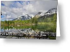 Morning Reflection On String Lake Greeting Card