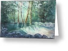 Mosquito Creek 2 Greeting Card