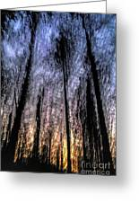 Motion Blurred Trees In A Forest Greeting Card