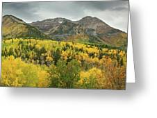 Mount Timpanogos Fall Colors Greeting Card