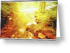 Mountain Stream In Summer Mist Greeting Card