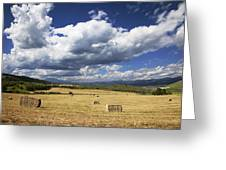 Mountainfarm Greeting Card by Mark Smith
