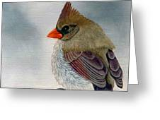 Mrs. Cardinal Greeting Card by Tracey Goodwin