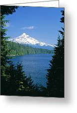 Mt. Hood National Forest Greeting Card