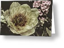 Muted Tones Greeting Card