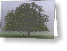 Mystic Tree Greeting Card