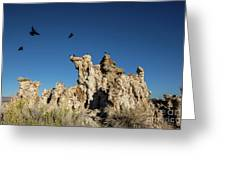 Natural Rock Formation And Wild Birds At Mono Lake, Eastern Sier Greeting Card