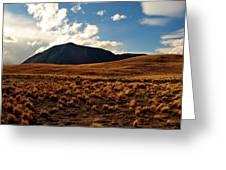 New Zealand Landscape Greeting Card