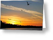 November Sunset Greeting Card