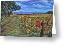 November Vineyard Greeting Card